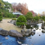 garden outside Nijo Castle Teahouse