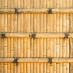 25249451-Traditional-Japanese-bamboo-wall-Stock-Photo