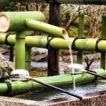 bamboofountain