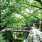 Philosophers_Walk_Kyoto_Japan