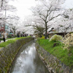 philosophers-path-kyoto-10