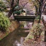 tetsugaku-no-michi_5-0_nov031
