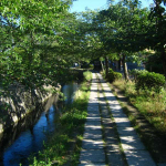 the_philosopher__s_path_by_japanstocks